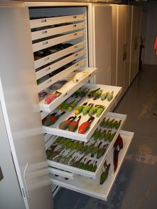 Zoology – Ornithology Museum Storage Cabinets Delta Designs 02
