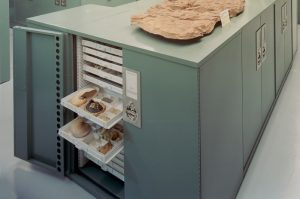 Geology Museum Storage Cabinet