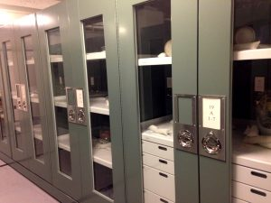 Historical Museum Storage – Delta Designs 01